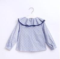 Imagen de blusa con maxi volante